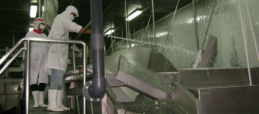 Cleaning of Food Processing Equipments